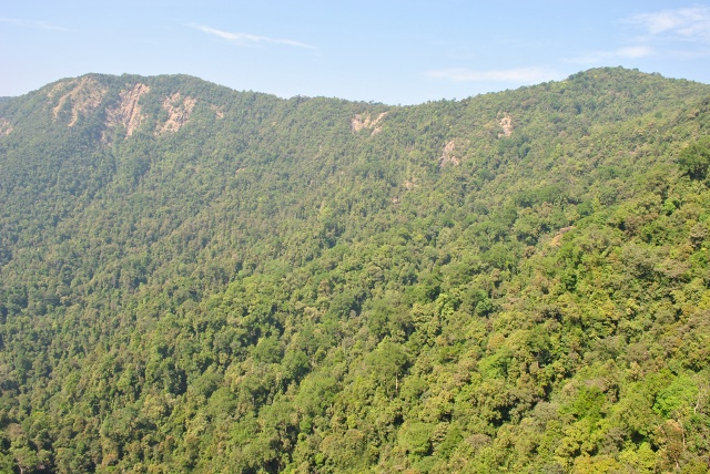 Agumbe forest  view from Barkana falls