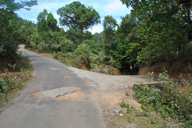 Narasimha parvatha trek route (From kigga side) : Keep right