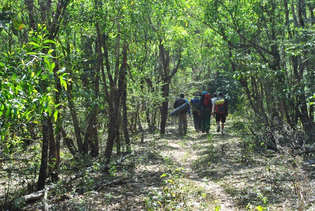 Trek through Agumbe forest