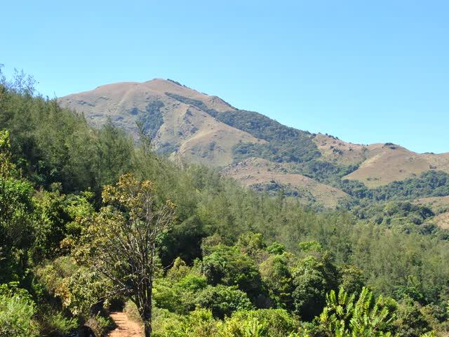 Tadiyandamol trek: First view of Tadiandamol peak