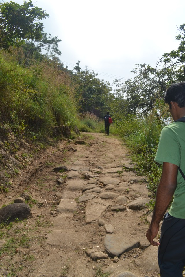 Easy trek path till water falls